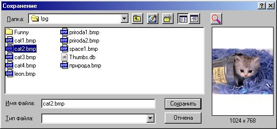 Windows 98, Windows 98 SE, Windows Me